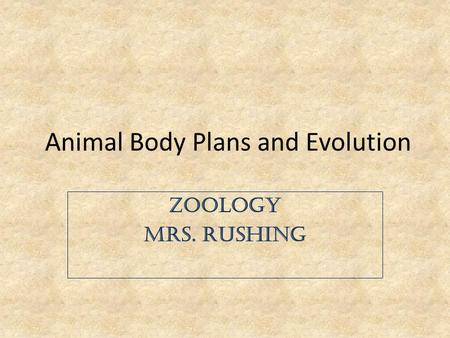 Animal Body Plans and Evolution Zoology Mrs. Rushing.