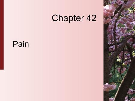 Chapter 42 Pain. 42-2 Copyright 2004 by Delmar Learning, a division of Thomson Learning, Inc. Pain  Pain is a universal experience.  Pain is a state.
