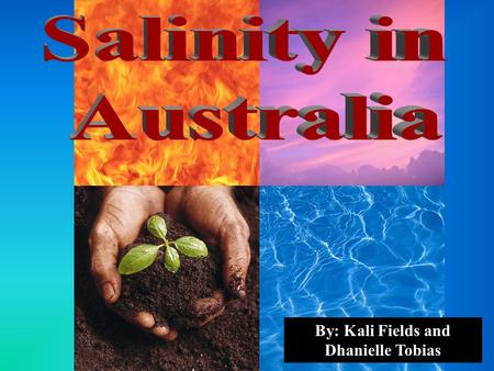 By: Kali Fields and Dhanielle Tobias. Unsuitable soil and topography Soil salinity is the build up of salts to such a point that it ruins the soil and.