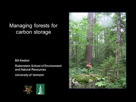 Managing forests for carbon storage Bill Keeton Rubenstein School of Environment and Natural Resources University of Vermont.