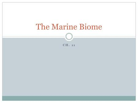 CH. 11 The Marine Biome.