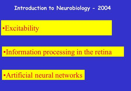 Excitability Information processing in the retina Artificial neural networks Introduction to Neurobiology - 2004.