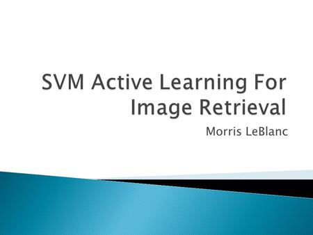 Morris LeBlanc.  Why Image Retrieval is Hard?  Problems with Image Retrieval  Support Vector Machines  Active Learning  Image Processing ◦ Texture.