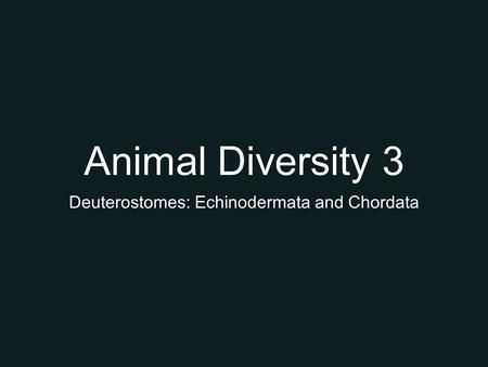 Animal Diversity 3 Deuterostomes: Echinodermata and Chordata.