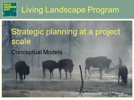 Living Landscape Program Conceptual Models Strategic planning at a project scale.