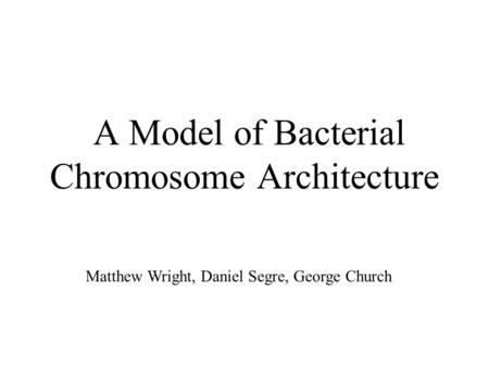 A Model of Bacterial Chromosome Architecture Matthew Wright, Daniel Segre, George Church.