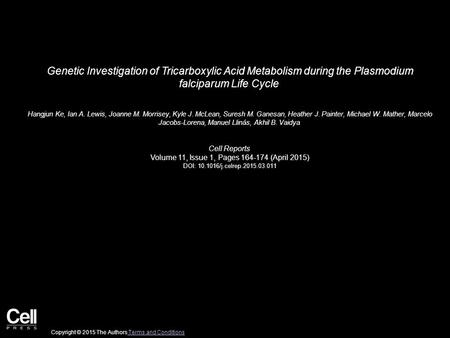 Genetic Investigation of Tricarboxylic Acid Metabolism during the Plasmodium falciparum Life Cycle Hangjun Ke, Ian A. Lewis, Joanne M. Morrisey, Kyle J.