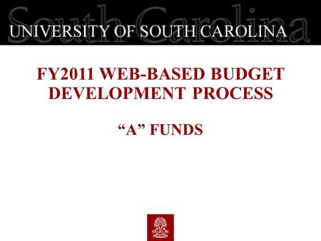 "FY2011 WEB-BASED BUDGET DEVELOPMENT PROCESS ""A"" FUNDS."