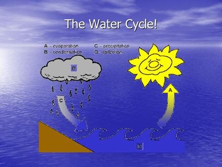 The Water Cycle!. 4 Steps of the Water Cycle 1. Evaporation 2. Condensation 3. Precipitation 4. Collection.