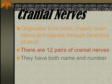 1 Cranial Nerves Originates from brain (mainly brain stem) and passes through foramina of skull There are 12 pairs of cranial nerves They have both name.