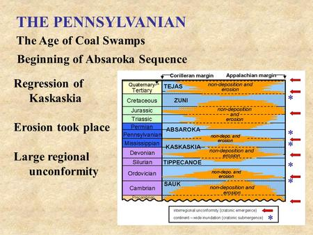 THE PENNSYLVANIAN The Age of Coal Swamps Beginning of Absaroka Sequence Regression of Kaskaskia Erosion took place Large regional unconformity.
