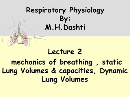Respiratory Physiology By: M.H.Dashti Lecture 2 mechanics of breathing, static Lung Volumes & capacities, Dynamic Lung Volumes.