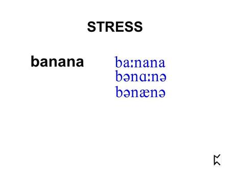 "Banana STRESS. banana STRESS STRESS goes under many names: ""stress"" ""emphasis"" ""accent"""