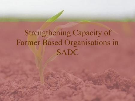 Strengthening Capacity of Farmer Based Organisations in SADC.