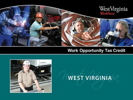Work Opportunity Tax Credit. A Federal Income Tax Credit that provides incentives to private sector employers to encourage hiring individuals from nine.