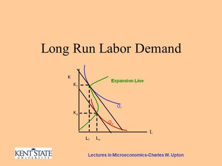 Lectures in Microeconomics-Charles W. Upton Long Run Labor Demand.