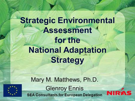 Strategic Environmental Assessment for the National Adaptation Strategy Mary M. Matthews, Ph.D. Glenroy Ennis SEA Consultants for European Delegation.