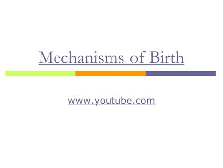 Mechanisms of Birth www.youtube.com.