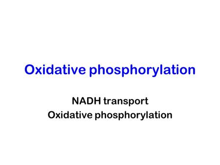 Oxidative phosphorylation NADH transport Oxidative phosphorylation.