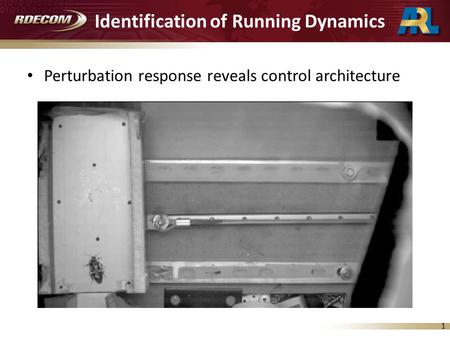 1 Identification of Running Dynamics Perturbation response reveals control architecture.