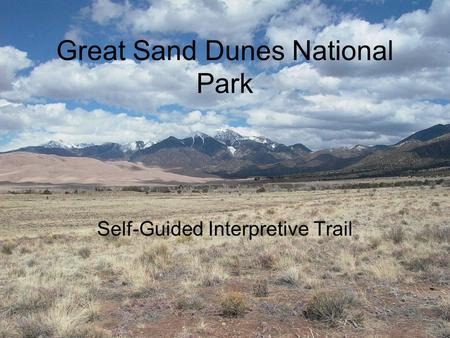 Great Sand Dunes National Park Self-Guided Interpretive Trail.