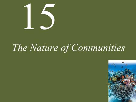 "15 The Nature of Communities. 15 The Nature of Communities Case Study: ""Killer Algae!"" What Are Communities? Community Structure Interactions of Multiple."