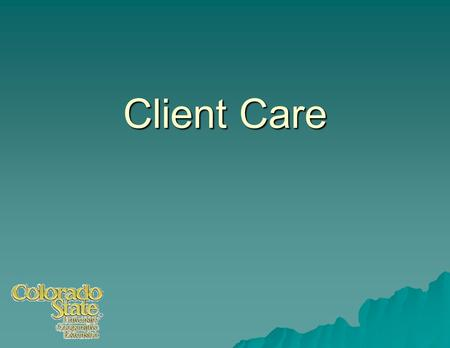 Client Care.  First impressions and follow through are critical for success.  Need: Principles and procedures to help assure success.