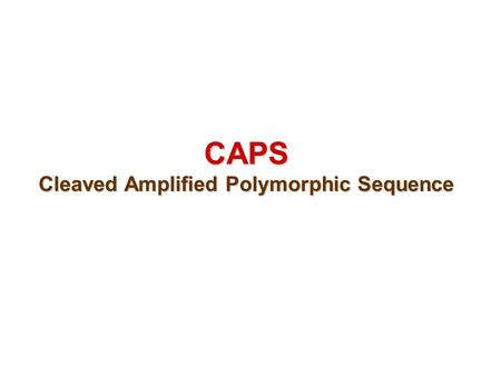 CAPS Cleaved Amplified Polymorphic Sequence. CAPS - CAPS (cleaved amplified polymorphic sequence) is also known as PCR-RFLPs (polymerase chain reaction-restriction.