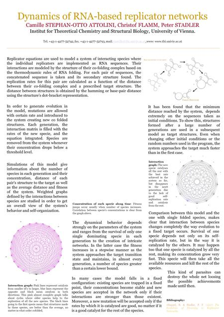 Dynamics of RNA-based replicator networks Camille STEPHAN-OTTO ATTOLINI, Christof FLAMM, Peter STADLER Institut for Theoretical Chemistry and Structural.