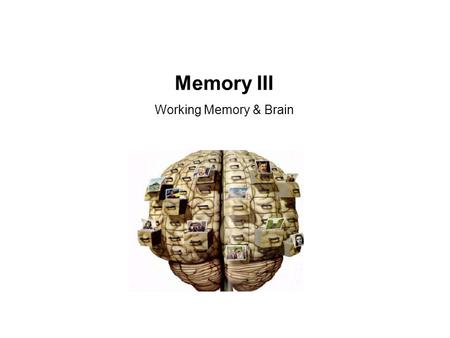 Memory III Working Memory & Brain. Atkinson & Shiffrin (1968) Model of Memory.