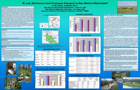 """E. coli, Enterococci and Protozoan Transport in New Mexico Watersheds"" G. M. Huey 1 & Meyer, M. L 2 New Mexico Environment Department – Santa Fe, NM New."