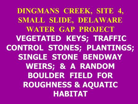 DINGMANS CREEK, SITE 4, SMALL SLIDE, DELAWARE WATER GAP PROJECT VEGETATED KEYS; TRAFFIC CONTROL STONES; PLANTINGS; SINGLE STONE BENDWAY WEIRS; & A RANDOM.