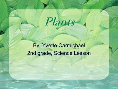 Plants By: Yvette Carmichael 2nd grade, Science Lesson.