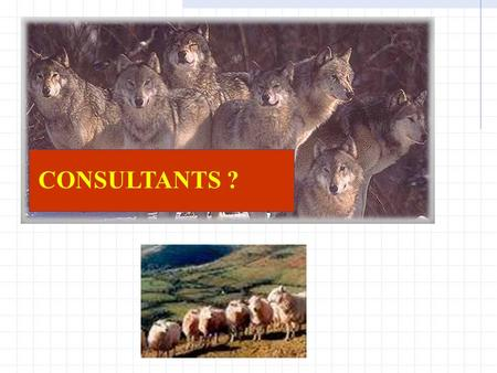 CONSULTANTS ?. CONSULTANTS Sheep in Wolf's Clothing By Gary McQuown Data and Analytic Solutions, Inc.