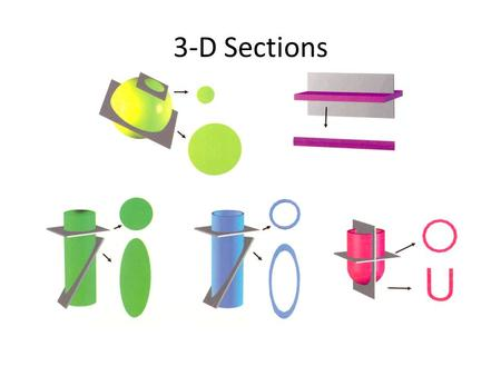 3-D Sections. Lab 25 – Thinking About Microscopic Images.
