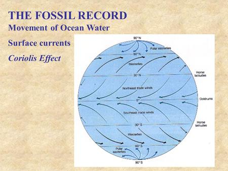 THE FOSSIL RECORD Movement of Ocean Water Surface currents