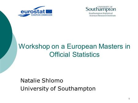 1 Workshop on a European Masters in Official Statistics Natalie Shlomo University of Southampton.