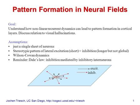 Jochen Triesch, UC San Diego,  1 Pattern Formation in Neural Fields Goal: Understand how non-linear recurrent dynamics can.