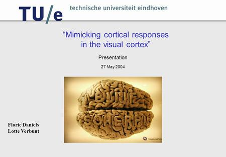 """Mimicking cortical responses in the visual cortex"" Presentation 27 May 2004 Florie Daniels Lotte Verbunt."