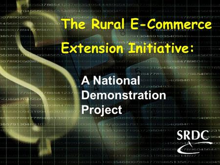 The Rural E-Commerce Extension Initiative: A National Demonstration Project.