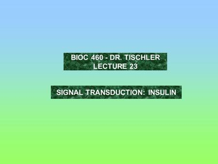 SIGNAL TRANSDUCTION: INSULIN