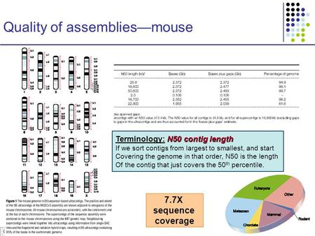 CS273a Lecture 5, Win07, Batzoglou Quality of assemblies—mouse N50 contig length Terminology: N50 contig length If we sort contigs from largest to smallest,