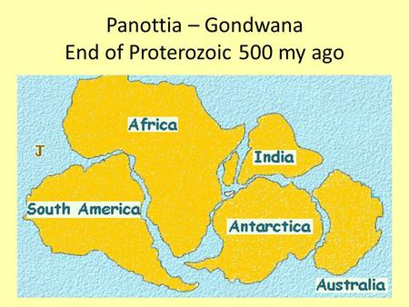Panottia – Gondwana End of Proterozoic 500 my ago.