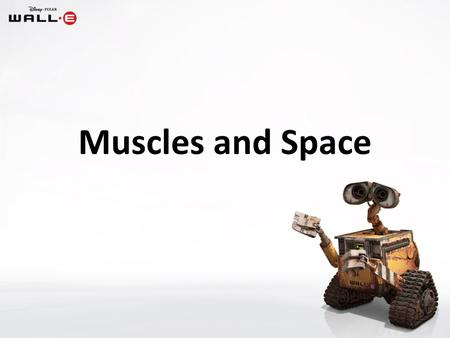 Muscles and Space. Two functions of your skeleton are to: (1)provide shape and support for your body (2)enable you to move.