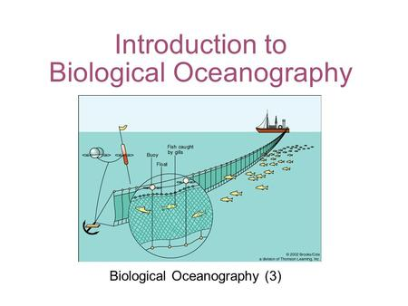 Introduction to Biological Oceanography Biological Oceanography (3)