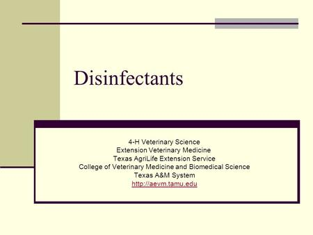 Disinfectants 4-H Veterinary Science Extension Veterinary Medicine Texas AgriLife Extension Service College of Veterinary Medicine and Biomedical Science.