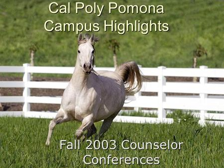 Fall 2003 Counselor Conferences Cal Poly Pomona Campus Highlights.