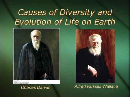 Causes of Diversity and Evolution of Life on Earth Charles Darwin Alfred Russell Wallace.