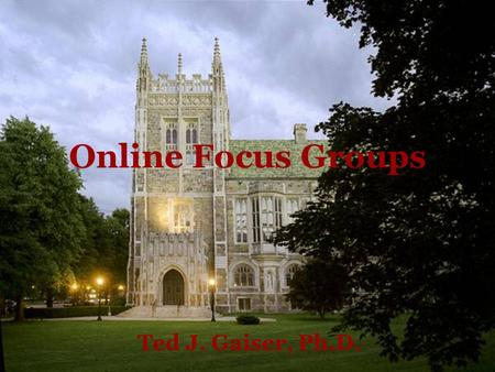 Online Focus Groups Ted J. Gaiser, Ph.D.. Goals Create a space for us to engage in a discussion about online focus groups Introduce topics of interest.