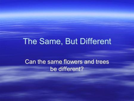 Can the same flowers and trees be different?